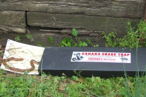 LARGE_CAHABA_SNAKE_TRAP